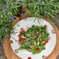 een Vegan switch lunch salade