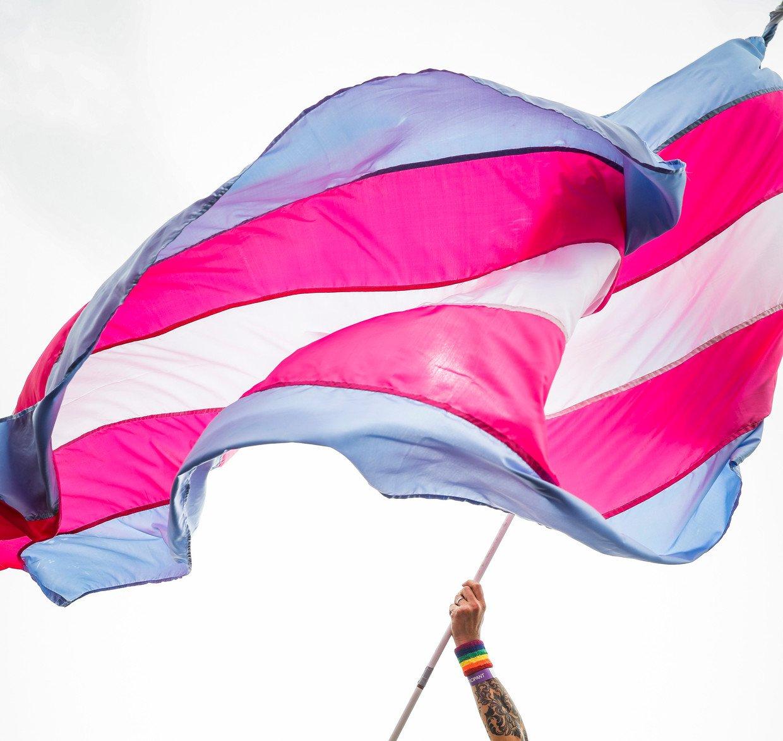 Internationale dag van Transgenderrechten Transgender vlag Trans vlag bewonersorganisatie Moerwijk