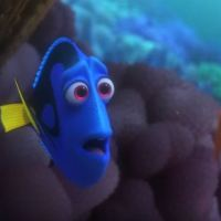 Find Time to Watch the FINDING DORY Trailer