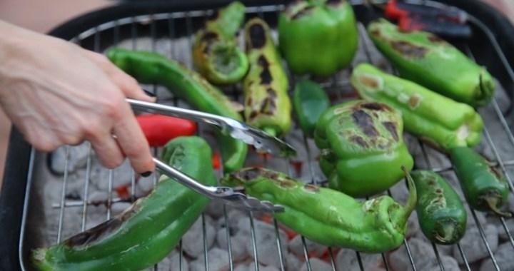 Grilling Vegetables in Our Backyard - Vlog Post