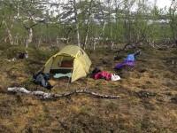 Zelten im Øvre Dividal Nationalpark