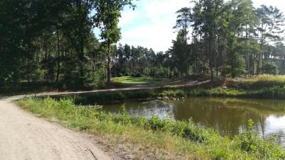 Tee 6 über den Teich zum Grün