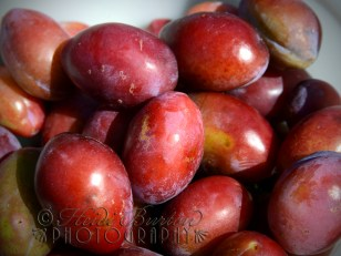 10th August 2013 - we got plums...