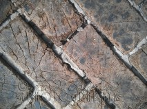 """18th August - the wonderful wooden """"bricked"""" floor in the Weston-super-Mare Museum"""