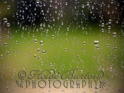 20131014-Rainy Window-006