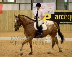 Special Olympics Great Britain Equestrian Competition
