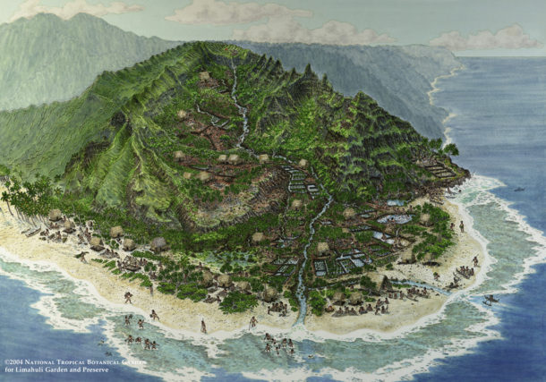 Artist's depiction of what the area around Limahuli must have looked like many years ago. Courtesy National Tropical Botanical Garden.