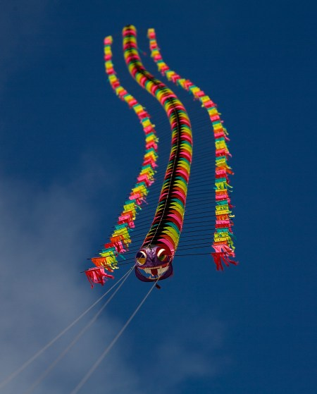 Tyrus Wong Centipede Kite | Photo © Sara Jane Boyers