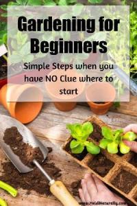 start a garden