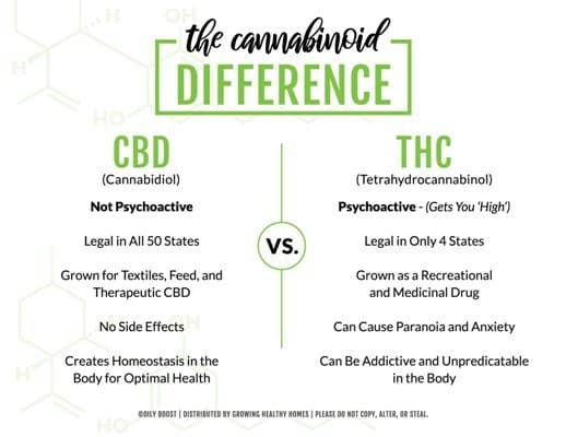 Facts People Don't Know About CBD Oil