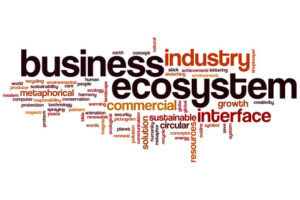 business operates in an ecosystem