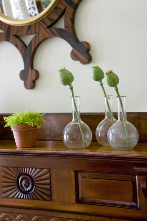 Heidi Pribell Detail of Plants on Sideboard