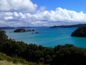 Bay_of_Island_landscape_new_zealand