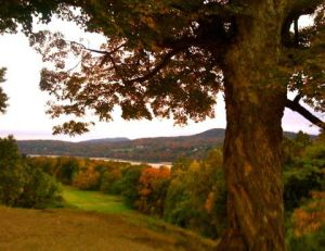 Fall_Colors_in_Poughkeepsie_New_York_by_Heidi_Siefkas
