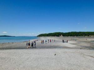 Bar_Path_Low_Tide_Bar_Harbor_Maine