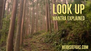 Look_Up_Mantra_Explained_Image_for_Video