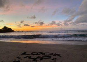 Road_to_Hana_Hamoa_Beach_Look_Up_by_Author_Heidi_Siefkas