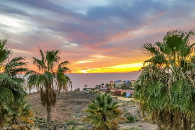 A Culinary Guide to Tenerife