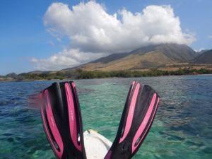 Author_Heidi_Siefkas_Olowalu_Maui_Snorkeling
