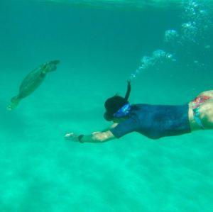 Heidi_Siefkas_Snorkeling_with_Turtle_Olowalu_Maui