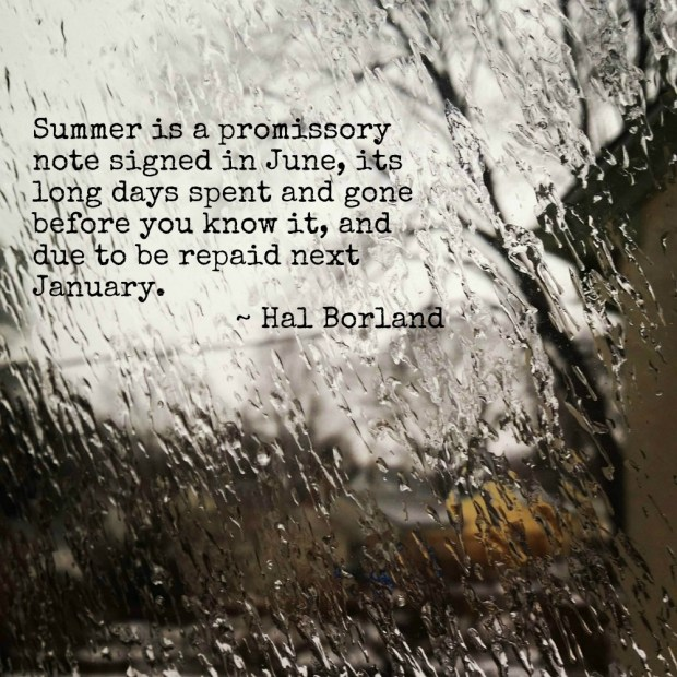 deep freeze forms ice on a window with the hal borland quote, Summer is a promissory note signed in June, its long days spent and gone before you know it, and due to be repaid next January.