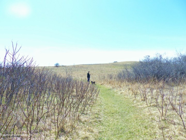 grass trail in glacial lakes state park