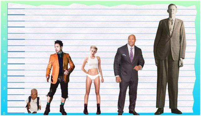 Robert Downey Jr.'s height 4