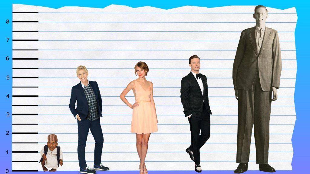 Ellen DeGeneres height 3