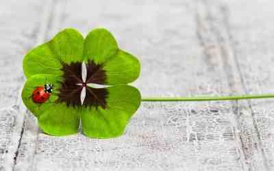 Glück – ein Geschenk oder eigener Verdienst?