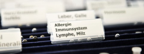 Allergietherapien in der Naturheilpraxis Christiane Thomaßen