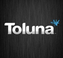 Toluna-Erfahrungen: Logo