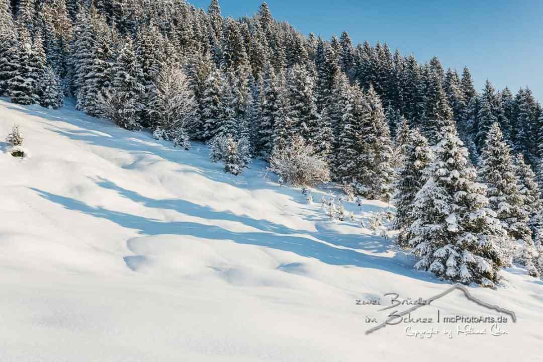 zwei Brüder im Schnee