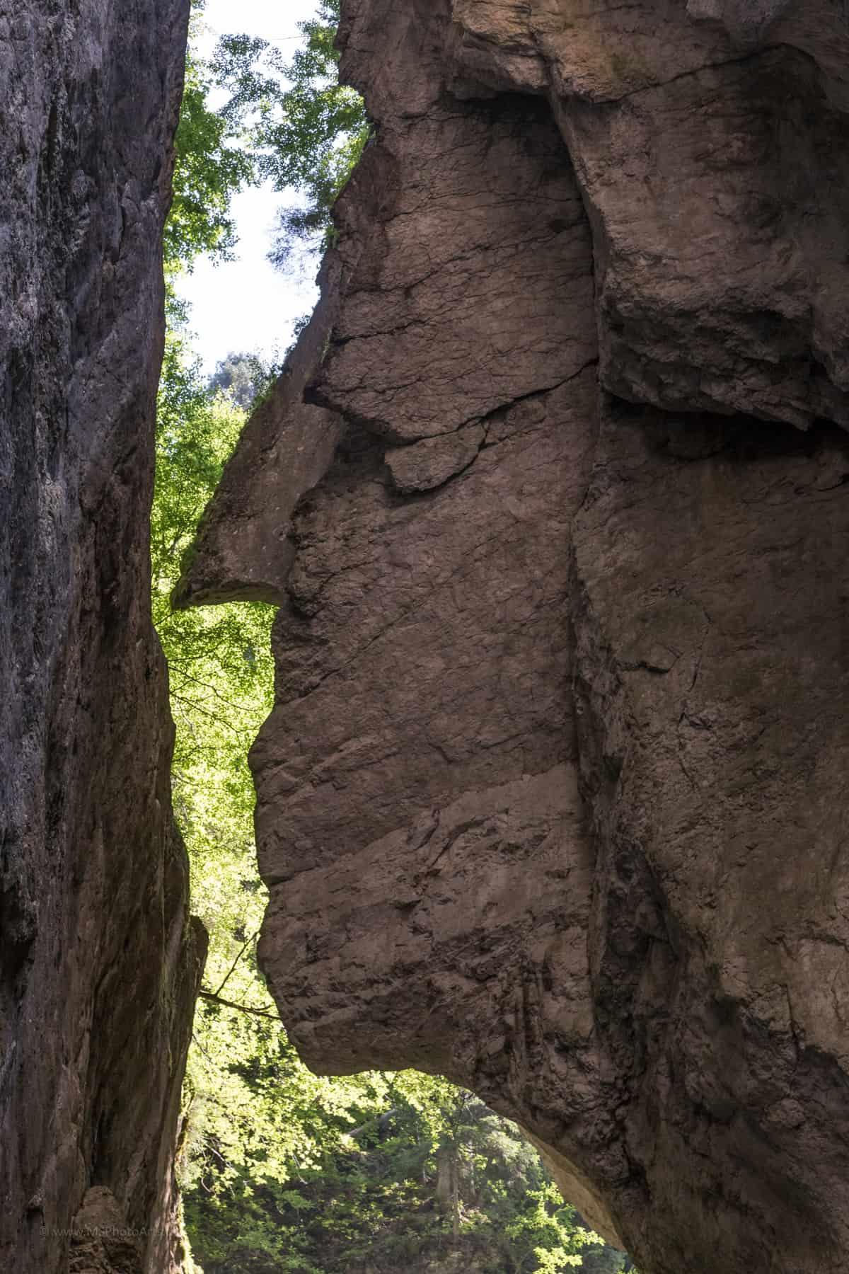 Ein Gesicht in der Breitachklamm Oberstdorf