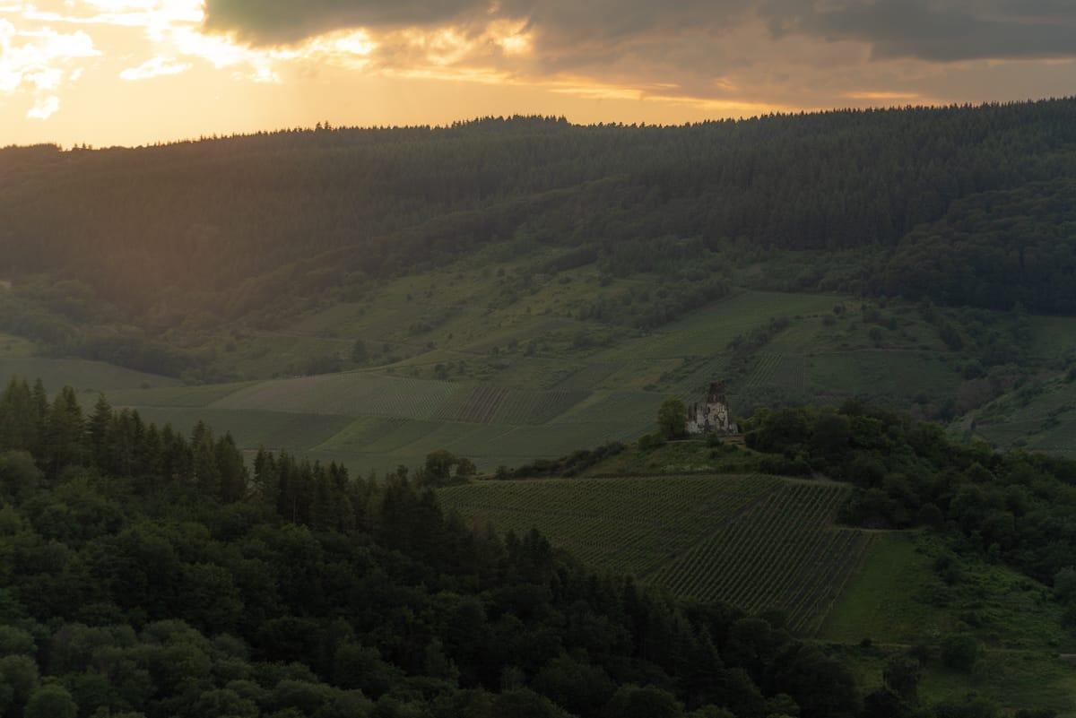 Kloster Wolf