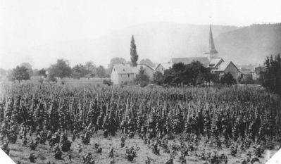 1870 Horchheim Bild Ansicht von der heutigen Mendelssohnstraße