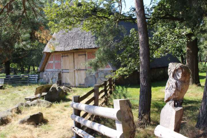 Der Schafkoben auf dem Pestruper Gräberfeld