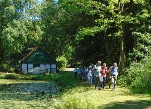 Wanderung Tecklenburg -Lengerich