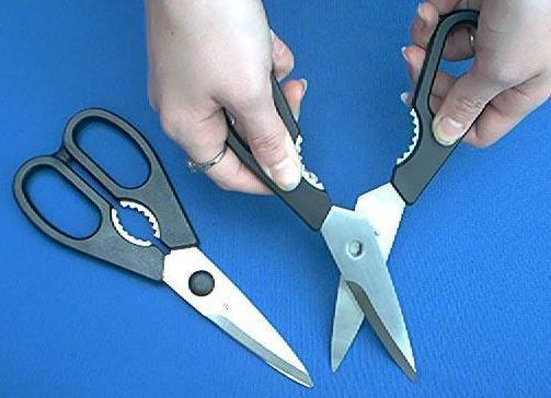 wusthof kitchen shears lighting 5558 scissors ss