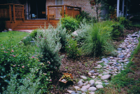 The Best Ways to Deal with Storm Water  Heinen Landscape