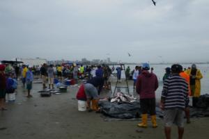Fisch Auslege am Strand