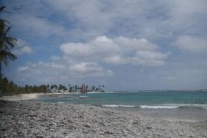 ハーフ・ムーン島でバード・ウォッチング