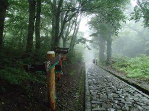 大山信仰で栄えた石畳道