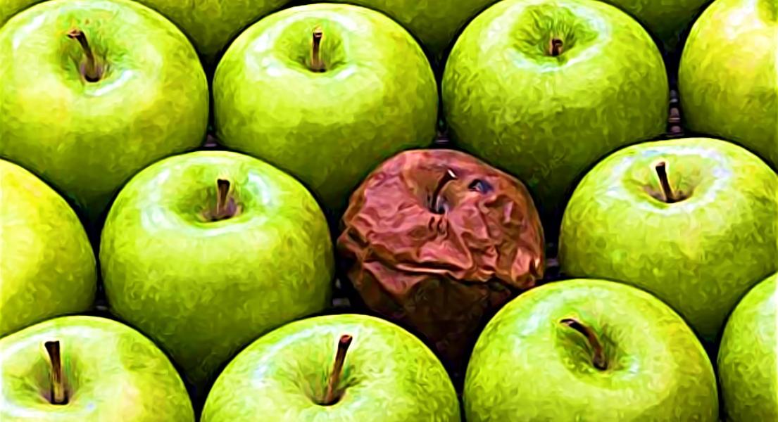 Apple Price Targets Slashed En Masse, Suppliers Plunge As Guidance Cut Bites