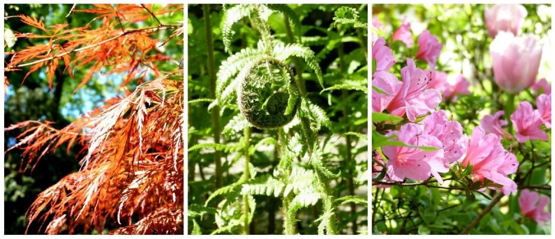 Frühling im Garten_Collage_klein