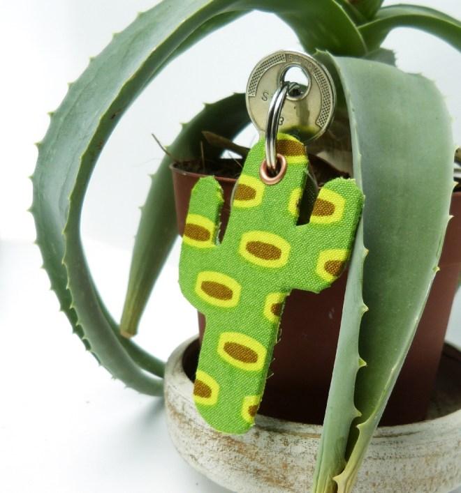 Kaktus mit Sukkulente_klein