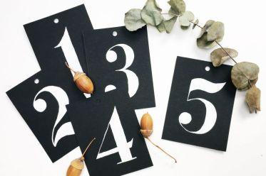 5 Fragen am Fünften