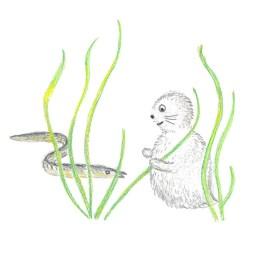 Bild av Noriko och en ål i ålgräsängen