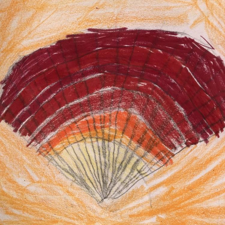 Bild av kammussla, som finns i Barnens konstgalleri