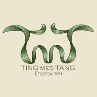 Logotypen för Ting med tang