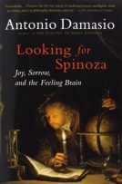 Lookinf f spinoza